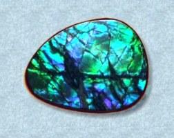 fotka modrozeleného ammolitu